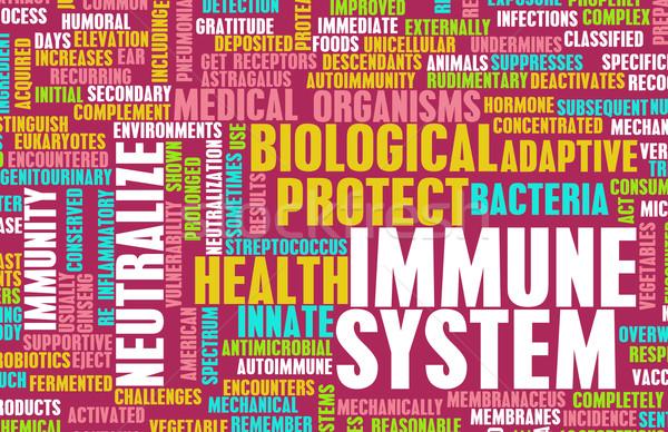 Immúnis jó egészséges emberi test orvosi Stock fotó © kentoh