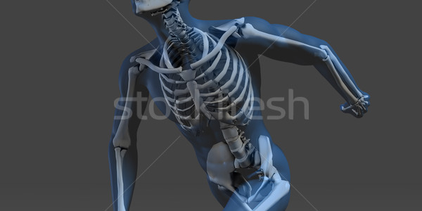Pesquisa desenvolvimento corpo ciência saúde abstrato Foto stock © kentoh