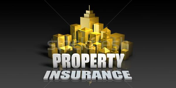 Property Insurance Stock photo © kentoh