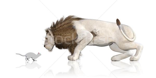 Cat Lion Reflection Stock photo © kentoh