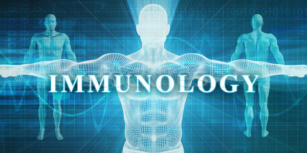 Immunology Stock photo © kentoh