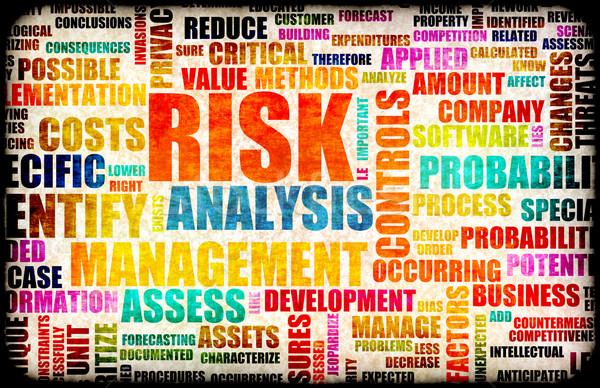 Risk Analysis Stock photo © kentoh