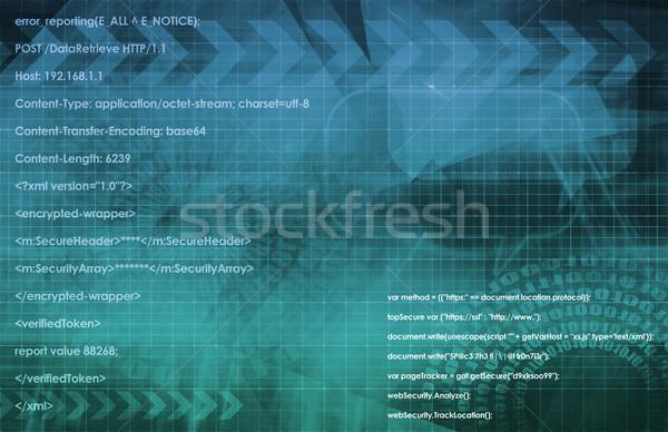 ソフトウェア プログラム を実行して コード スクリプト 技術 ストックフォト © kentoh