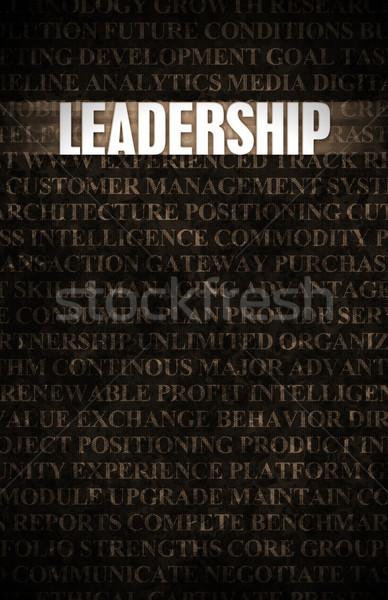 リーダーシップ ビジネス モチベーション 石の壁 壁 岩 ストックフォト © kentoh