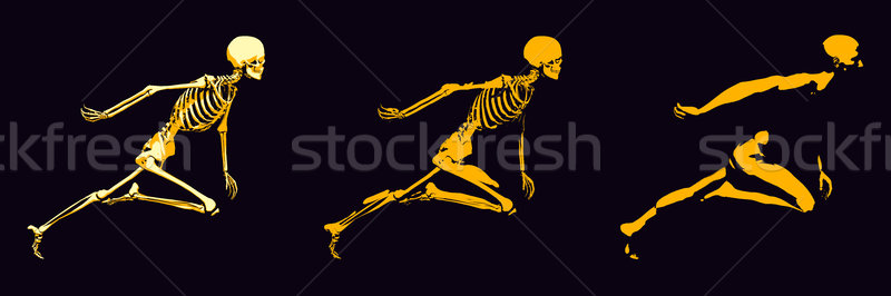 átlátszó emberi csont struktúra mozgás férfi Stock fotó © kentoh