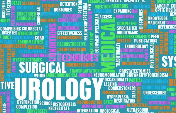 Urology Stock photo © kentoh