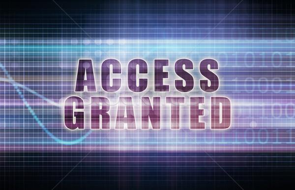 Access Granted Stock photo © kentoh