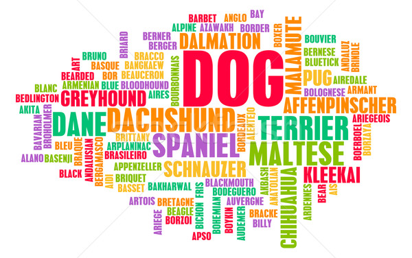 All Types of Dogs Stock photo © kentoh