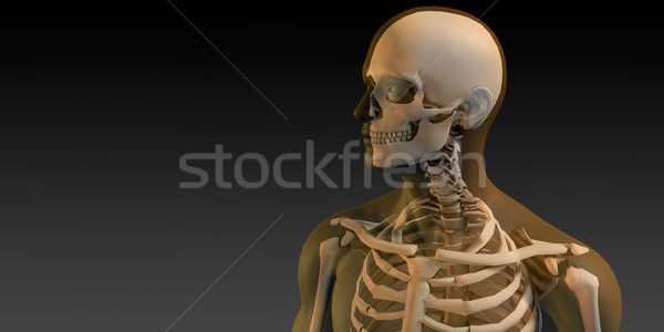 3D Concept of Human Male Body and Skeleton stock photo