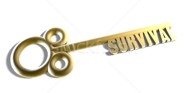 Instant Access to Survival Stock photo © kentoh