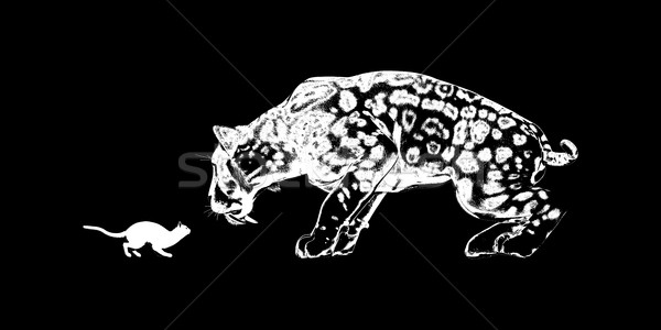 Cat Challenging a Sabretooth Stock photo © kentoh