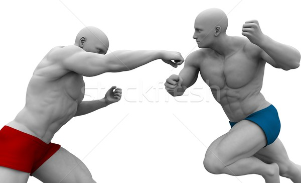 Martial Arts Training Stock photo © kentoh