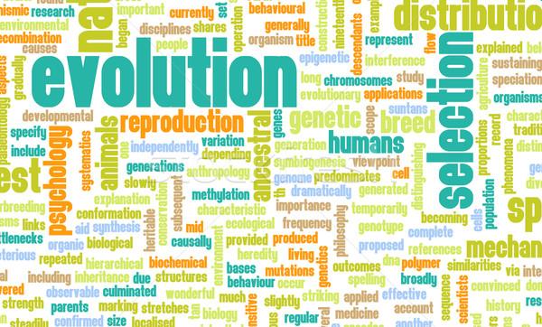 Evoluzione progresso uomo abstract natura scienza Foto d'archivio © kentoh