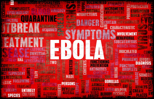 Ebola Stock photo © kentoh