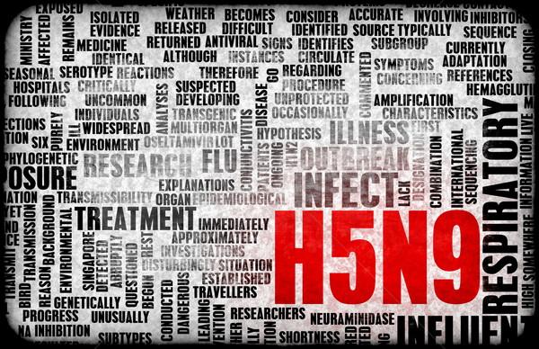 H5N9 Stock photo © kentoh
