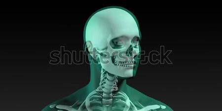 Médicos ilustración humanos cuerpo huesos hombre Foto stock © kentoh