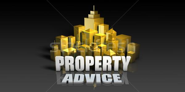 Property Advice Stock photo © kentoh