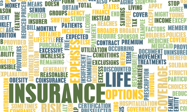 Life Insurance Stock photo © kentoh