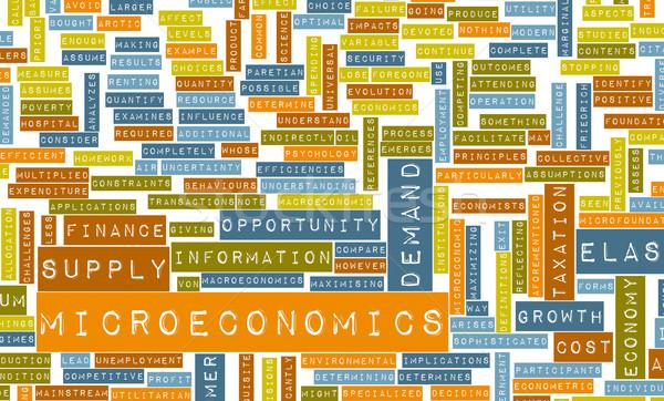 Micro ciencias económicas educación servicio mercado aprendizaje Foto stock © kentoh