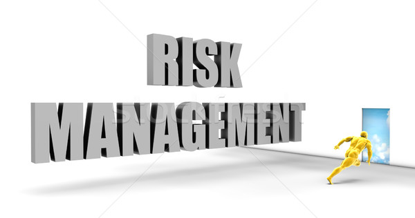 Risk Management Stock photo © kentoh