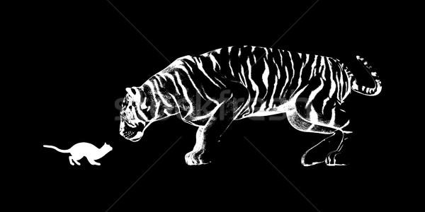 Cat Challenging a Tiger Stock photo © kentoh