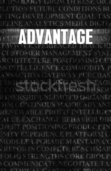 Advantage Stock photo © kentoh