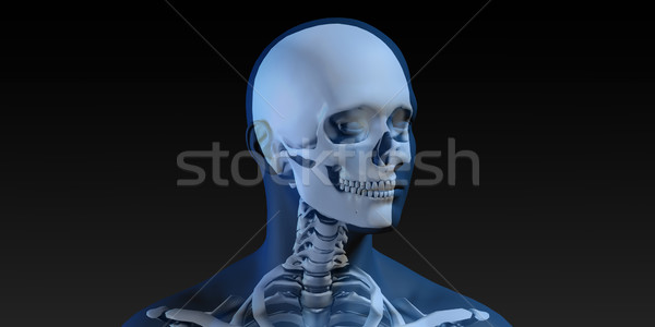 Radiography Scan with Bones Stock photo © kentoh