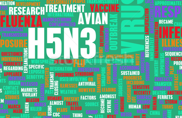 H5N3 Stock photo © kentoh