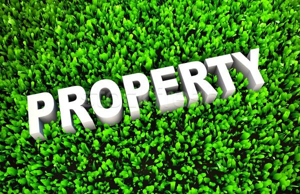Growing Property Wealth Stock photo © kentoh