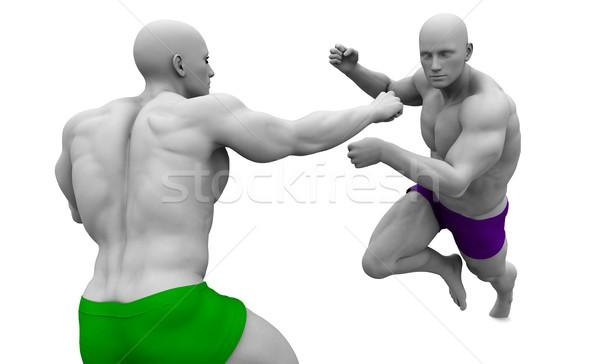 Martial Arts Combat Stock photo © kentoh