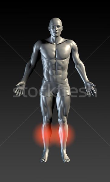 Scheenbeen Rood gloed gezondheid sport ziekenhuis Stockfoto © kentoh