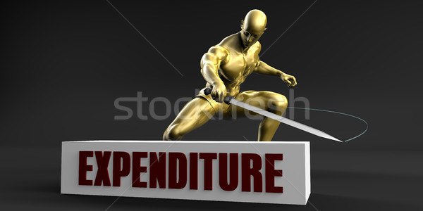 Reduce Expenditure Stock photo © kentoh