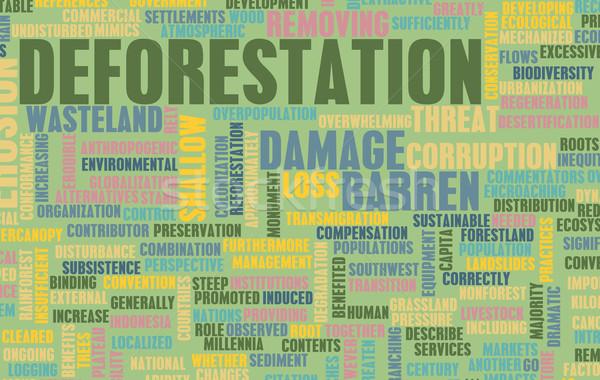 Stock fotó: Erdő · veszteség · kár · fa · zöld · ipar
