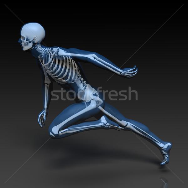 Stok fotoğraf: Insan · kemik · yapı · diyagram · mavi · siyah