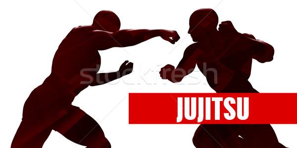 Japon sporu sınıf siluet iki adam kavga spor Stok fotoğraf © kentoh