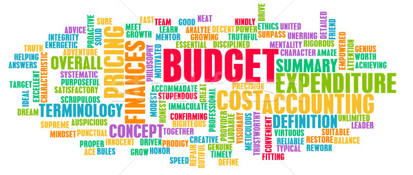 Budget Word Cloud Concept Stock photo © kentoh