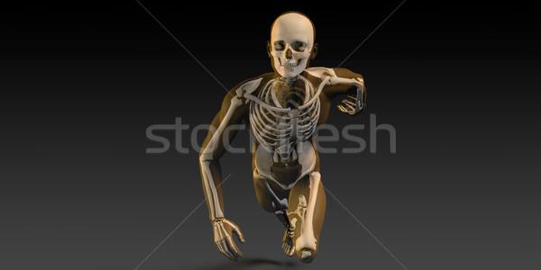 Scannen botten lichaam gezondheid onderwijs Stockfoto © kentoh