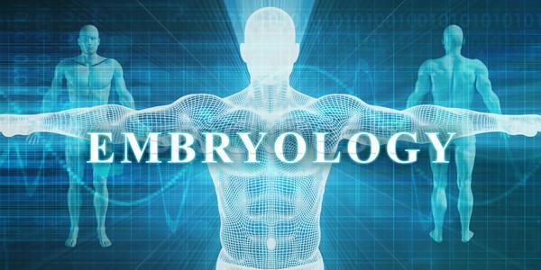 Embryology Stock photo © kentoh