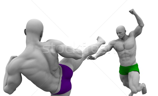 Stock photo: Martial Arts Combat