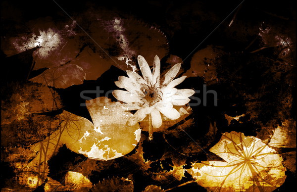 Onschuld natuur geschilderd bloemen kunst abstract Stockfoto © kentoh