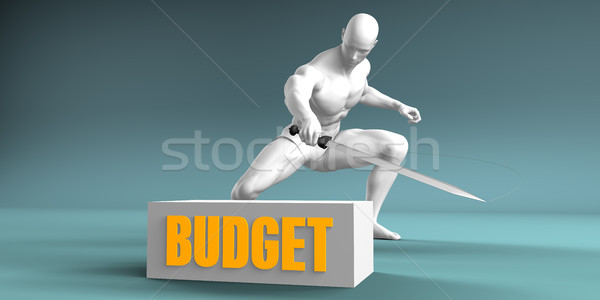Cutting Budget Stock photo © kentoh