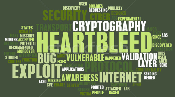 Heartbleed Exploit Stock photo © kentoh