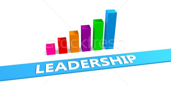 Groot leiderschap goede grafiek tonen vooruitgang Stockfoto © kentoh