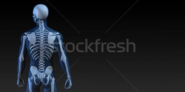 Przezroczysty ludzi kości struktury ruchu człowiek Zdjęcia stock © kentoh