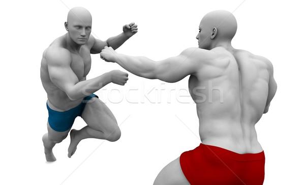 Küzdősportok harcol védelem test utca stílus Stock fotó © kentoh
