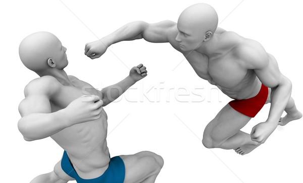 Vechtsporten vechten bescherming lichaam straat stijl Stockfoto © kentoh