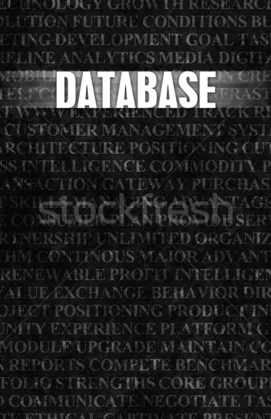 Database Stock photo © kentoh
