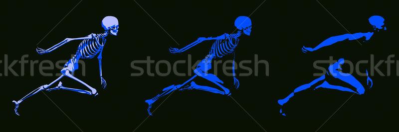 Maschio corpo scheletro esecuzione uomo Foto d'archivio © kentoh