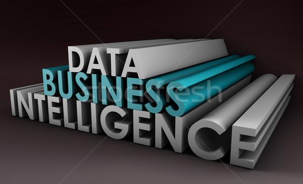 ビジネス インテリジェンス データ 分析 3D 世界 ストックフォト © kentoh