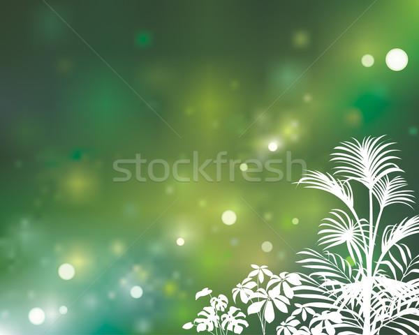 Green Natural Stock photo © keofresh
